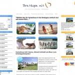 "Création du site internet ""Bretagne mit Herz"""